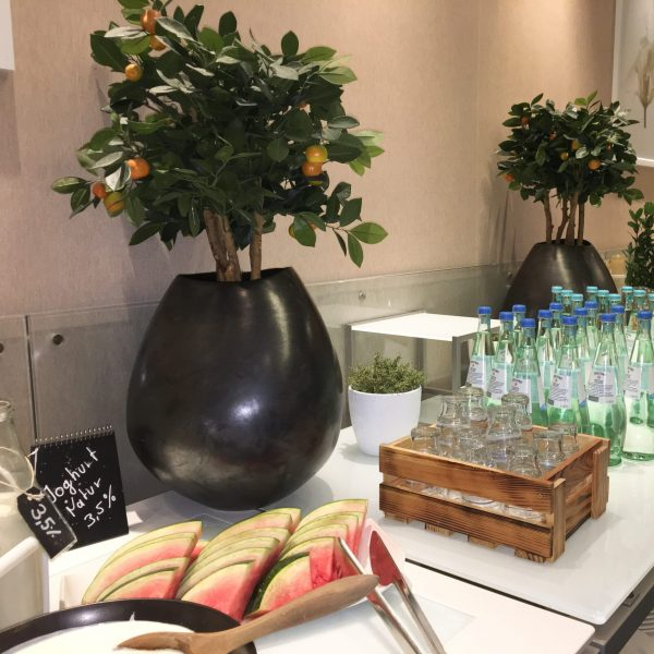 Linen Free Modular Buffet Tables